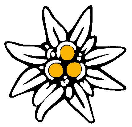 Comment dessiner une edelweiss - Coloriage fleur edelweiss ...